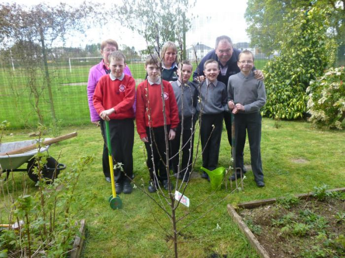 Check out our apple tree in the school garden next time you're out.