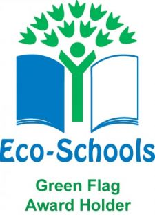 Image result for eco school flag